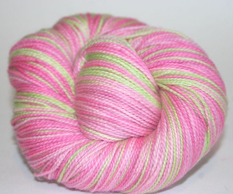 Gerbera - striped