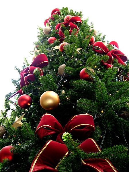 450px-christmas_tree_sxc_hu1