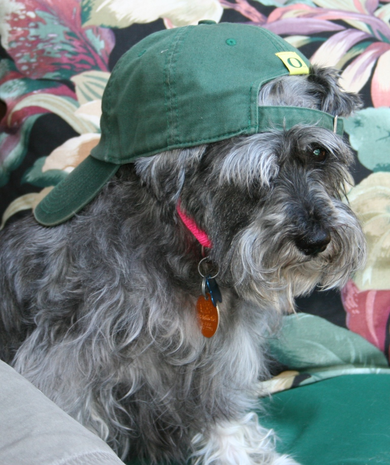Abby hat2