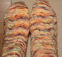 Fall_socks_by_suzanne