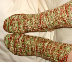 Ivy_socks